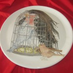 Galah In a Cage